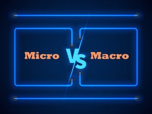 microlearning vs macro learning